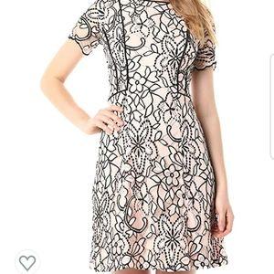 kensie Women's Blush Black Two Tone Lace Dress  16